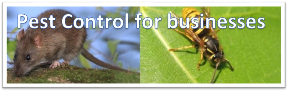 Pest Control for businesses
